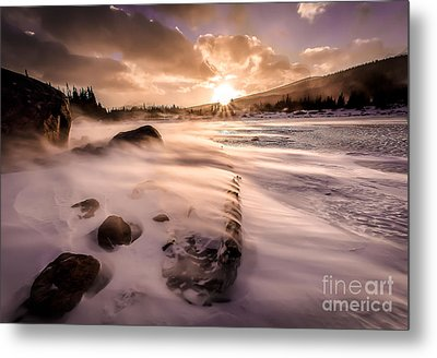 Windy Morning Metal Print by Steven Reed