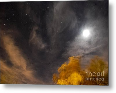 Windy Night Metal Print
