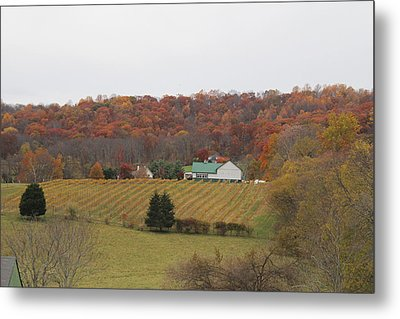 Winery In Virginia At Fall Metal Print by Renee Braun