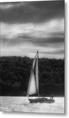 Wing On Wing Metal Print
