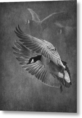 Winged Symphony Metal Print