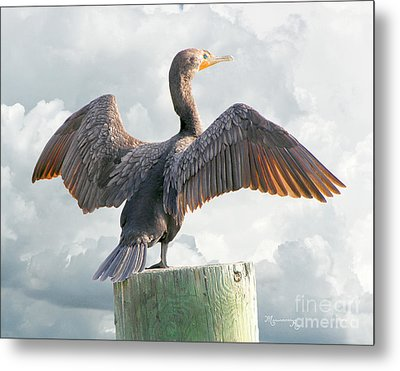 Winging It Metal Print by Mariarosa Rockefeller
