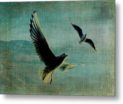 Wings Over The World Metal Print by Sarah Vernon