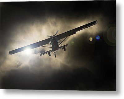 Metal Print featuring the photograph Wings by Paul Job