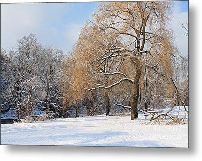 Winter Along The River Metal Print by Nina Silver