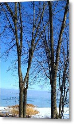 Winter At Lake Huron Metal Print by Rhonda Humphreys