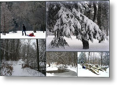 Metal Print featuring the photograph Winter At Petrifying Springs Park by Kay Novy