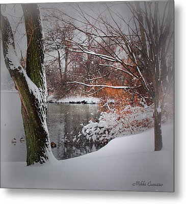 Winter At The Pond Metal Print by Mikki Cucuzzo