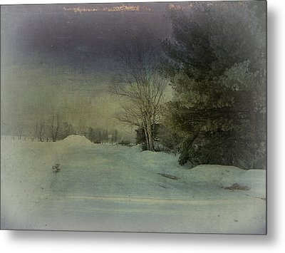 Winter Atmosphere  Metal Print by Dianne  Lacourciere