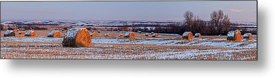 Metal Print featuring the photograph Winter Bales by Scott Bean