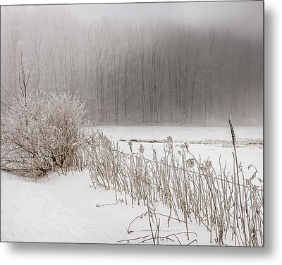 Winter Barbed Wire Fence Metal Print by Chris Bordeleau