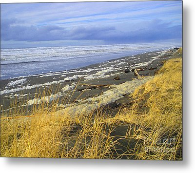Metal Print featuring the photograph Winter Beach by Jeanette French