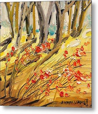 Winter Berries Metal Print by John Williams