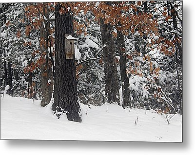 Metal Print featuring the photograph Winter Bird House by Wayne Meyer
