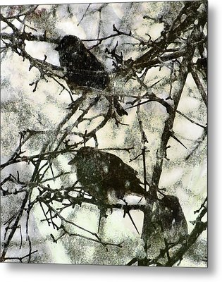 Winter Birds Metal Print by John Goyer