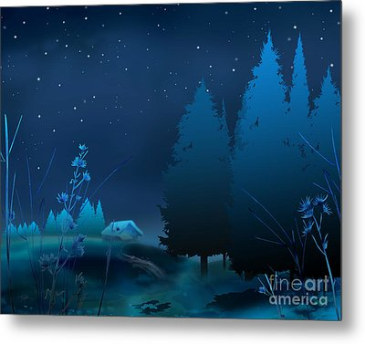 Winter Blue Night Metal Print by Bedros Awak