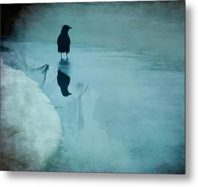 Winter Blues Metal Print by Gothicrow Images