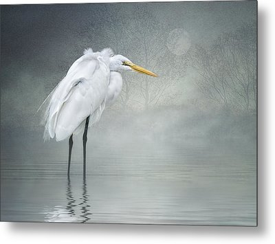 Metal Print featuring the photograph Winter Breeze by Brian Tarr