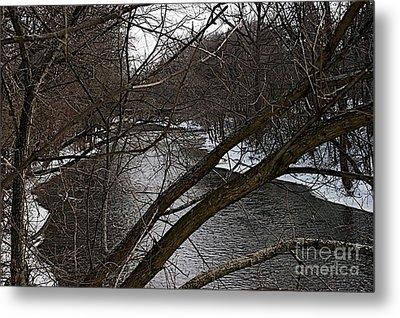 Winter Cedar Metal Print by Joseph Yarbrough