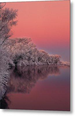Winter Color Metal Print by Leland D Howard