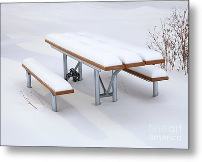 Winter Cover Metal Print by Mike  Dawson