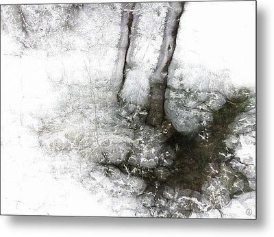 Winter Creek Metal Print by Gun Legler