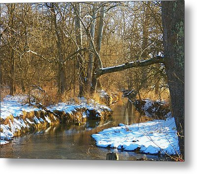 Winter Creek Metal Print by Joyce Kimble Smith