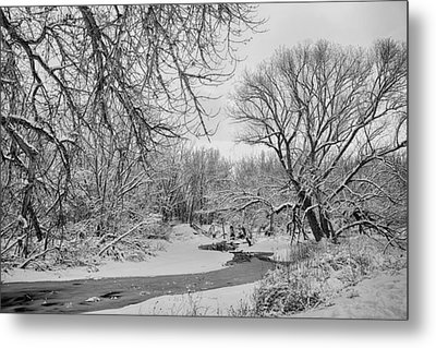 Winter Creek In Black And White Metal Print by James BO  Insogna