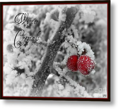 Metal Print featuring the photograph Winter Crystals On Red by Heidi Manly