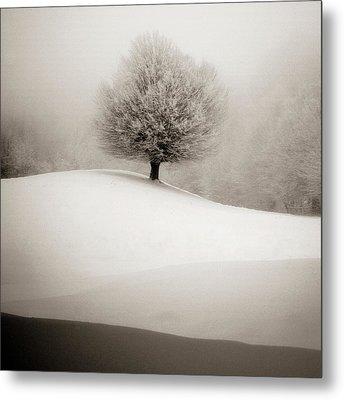 Winter Degradee Metal Print