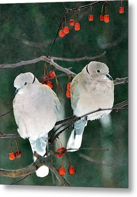 Winter Doves Metal Print by Betty LaRue