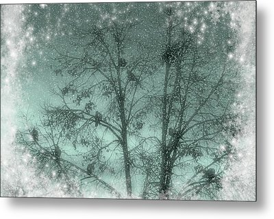 Winter Doves Metal Print by Diane Alexander