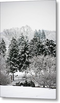 Winter Dream Metal Print by Allan Millora