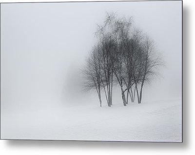 Winter Dream Metal Print by Bill Wakeley
