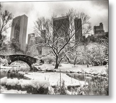 Winter Dreams Metal Print by Nishanth Gopinathan