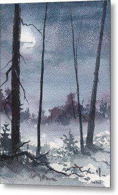 Winter Dreams Metal Print by Sean Seal