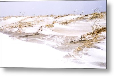 Winter Dunes Metal Print by William Walker