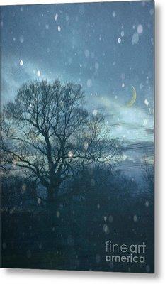 Winter Evening Metal Print by Jan Bickerton
