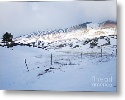 Winter Fence Metal Print by Nabucodonosor Perez