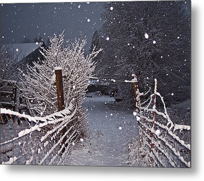 Winter Fence Metal Print by Steve Battle