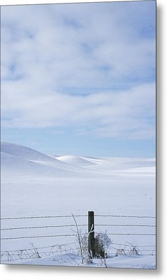 Winter Fenceline Metal Print by Latah Trail Foundation