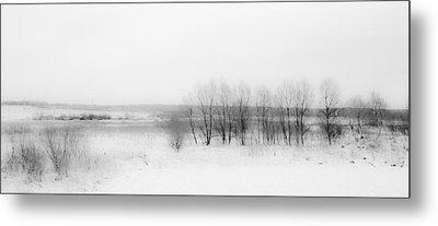 Winter Fields. Monochromatic  Metal Print by Jenny Rainbow