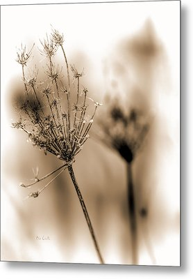 Winter Flowers II Metal Print