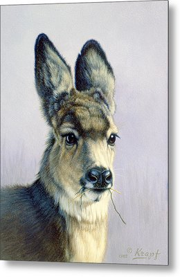 Winter Forage-fawn Metal Print
