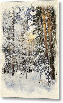 Winter Forest Landscape 44 Metal Print