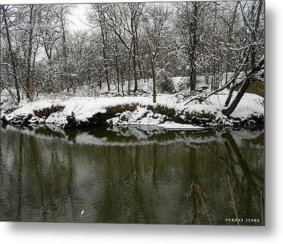Winter Forest Series 2 Metal Print by Verana Stark