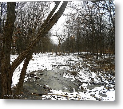 Winter Forest Series Metal Print by Verana Stark