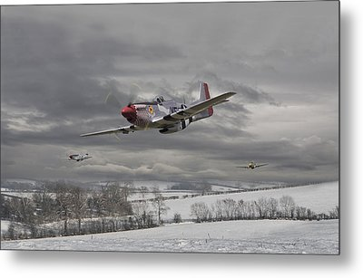 Winter Freedom Metal Print