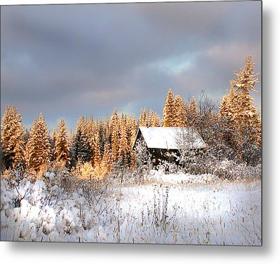 Winter Glow Metal Print by Doug Fredericks