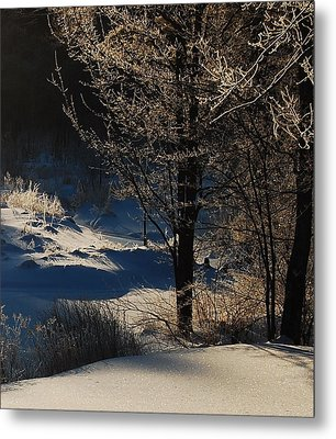 Metal Print featuring the photograph Winter Glow by Mim White